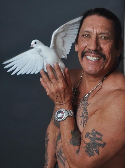Danny+Trejo+holding+a+dove.+Magical_377321_4608364